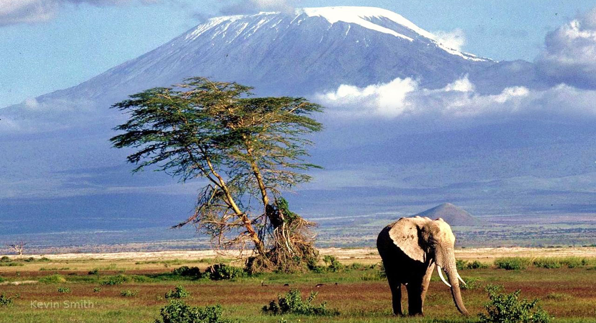 kilimanjaro_baner