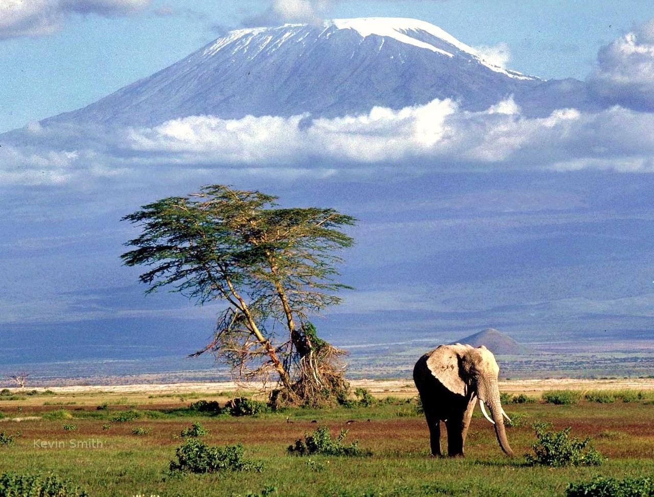 Tanzania_Safari_Of_Tanzania